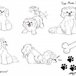 Character Model Sheet